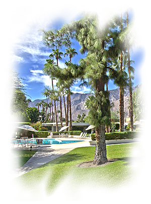 Firebird Estates Community Association CID Website | Palm Springs California